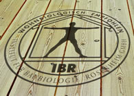 baubiologisch empfohlener Schutz für Holz